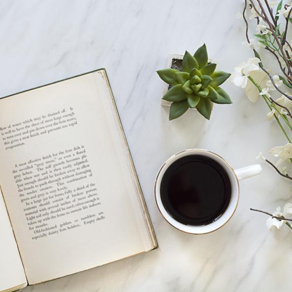 Servizi di traduzione, libro, tazza e pianta